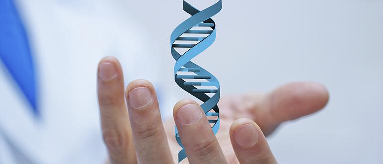 Экспертиза ДНК (судебная и независимая)